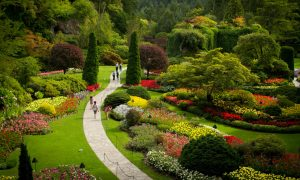 Beautiful Buchart Gardens