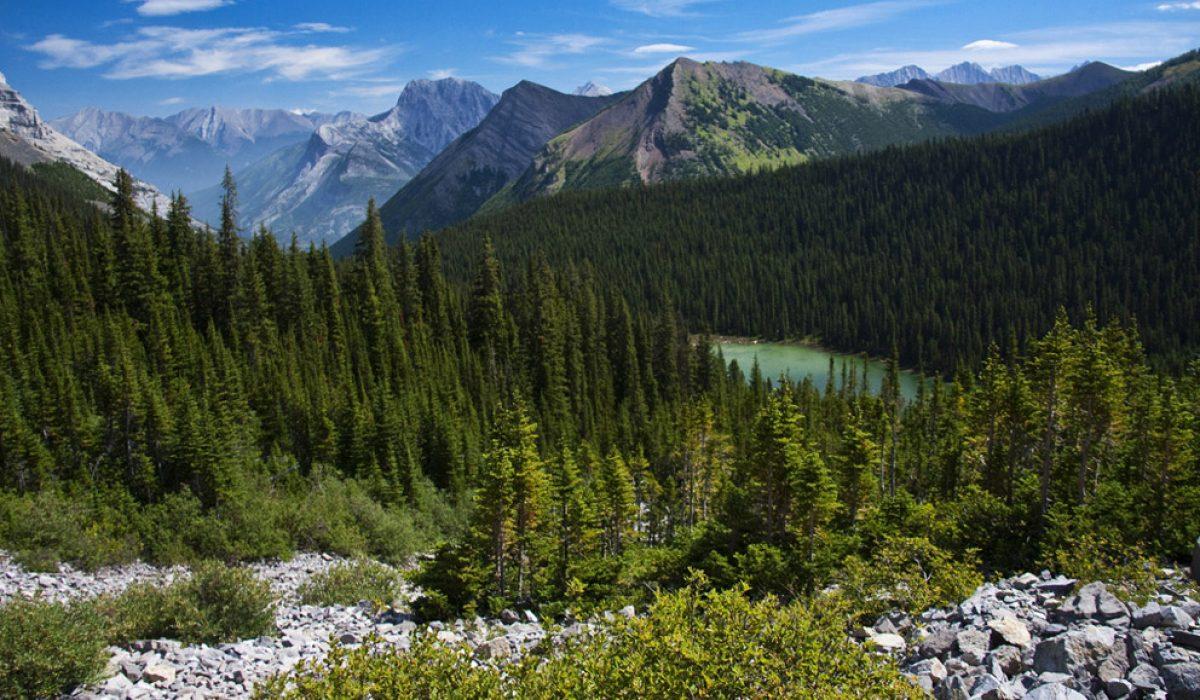 Hike: Lilian & Galatea Lakes