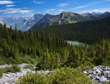 Hike: Lilian & Galatea Lakes