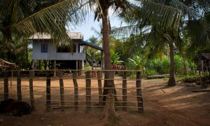 Discovering the Real Cambodia