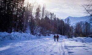 Winter Weekend in Fernie