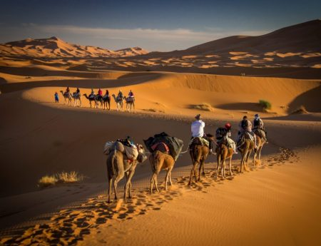 Bucket List: Ride a Camel in the Sahara Desert