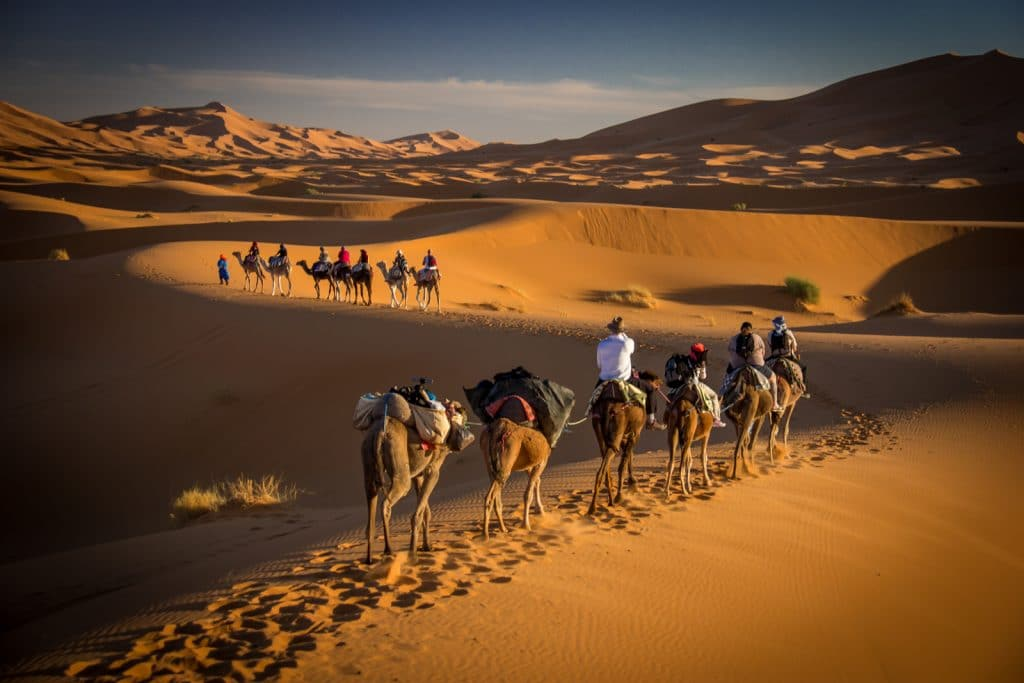 Image of: Camels Bucket List Ride Camel In The Sahara Desert Travel Tips For Dreamers Adventure Seekers Cantstopdreaming Cantstopdreaming Bucket List Ride Camel In The Sahara Desert Travel Tips For
