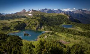 Hike: Sunshine Meadows (Rock Isle, Grizzly & Larix Lake)