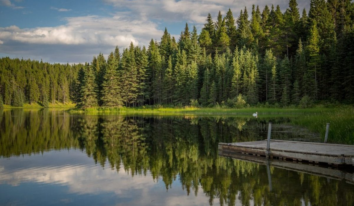 Weekend Itinerary for Cypress Hills