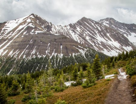 Hike: Ptarmigan Cirque Trail