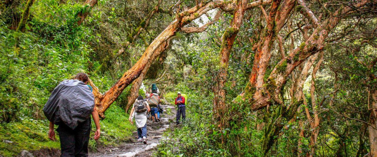 Inka Trail Hike